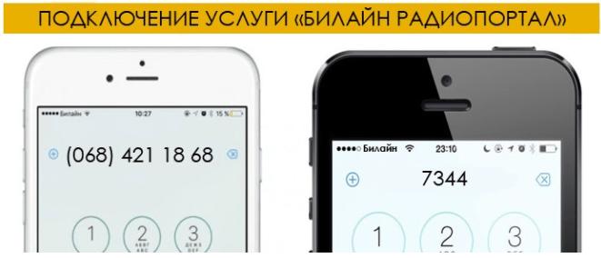 Как подключить и отключить услугу «Билайн радиопортал»?